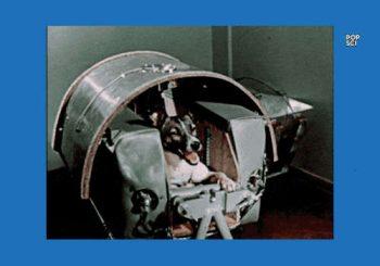 Sullo Sputnik 2, o di Laika, cagnetta spaziale
