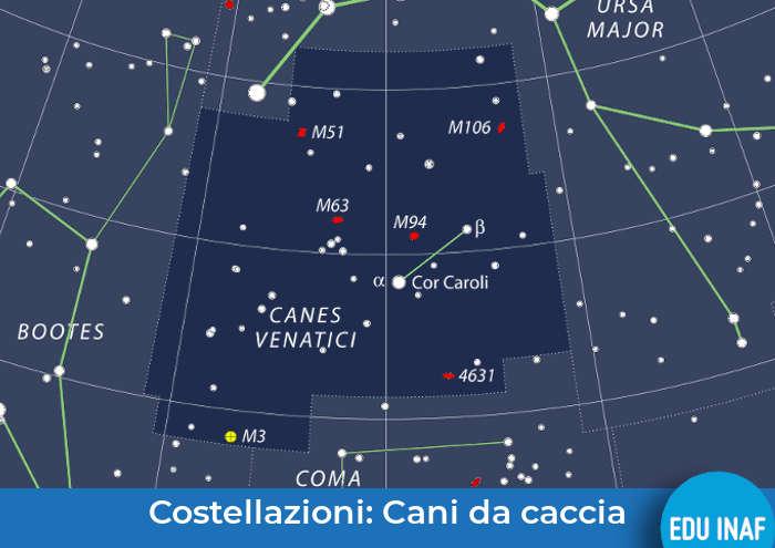 cani_caccia_evidenza