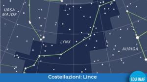 lince_evidenza