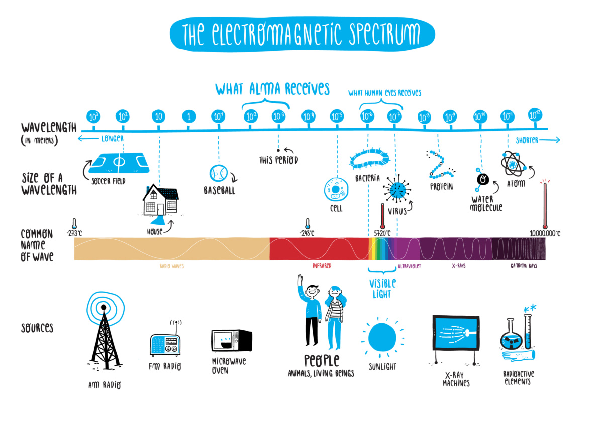 Schema dello spettro elettromagnetico, con indicate le sorgenti più comuni. E' indicato inoltre un confronto tra le lunghezze d'onda e oggetti noti. [Credits: Alma Kids Outreach]