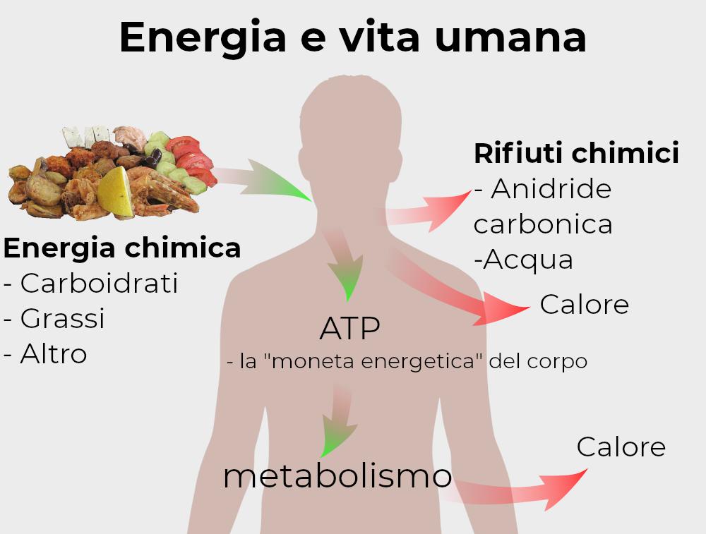 energia_vita_umana
