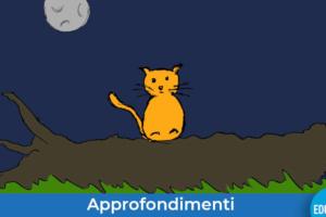 gatto_albero_luna-evidenza